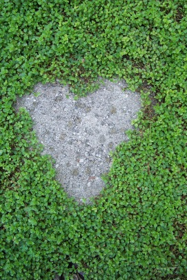 stepping stone heart
