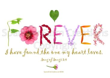 Forever - heart loves