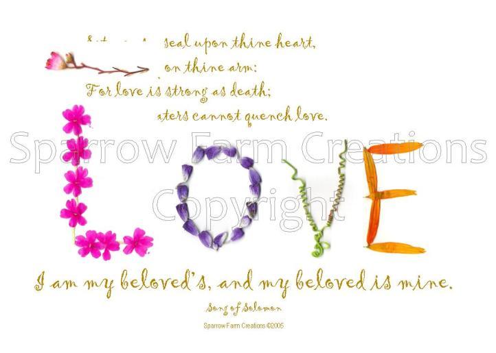 LOVE - Song of Songs