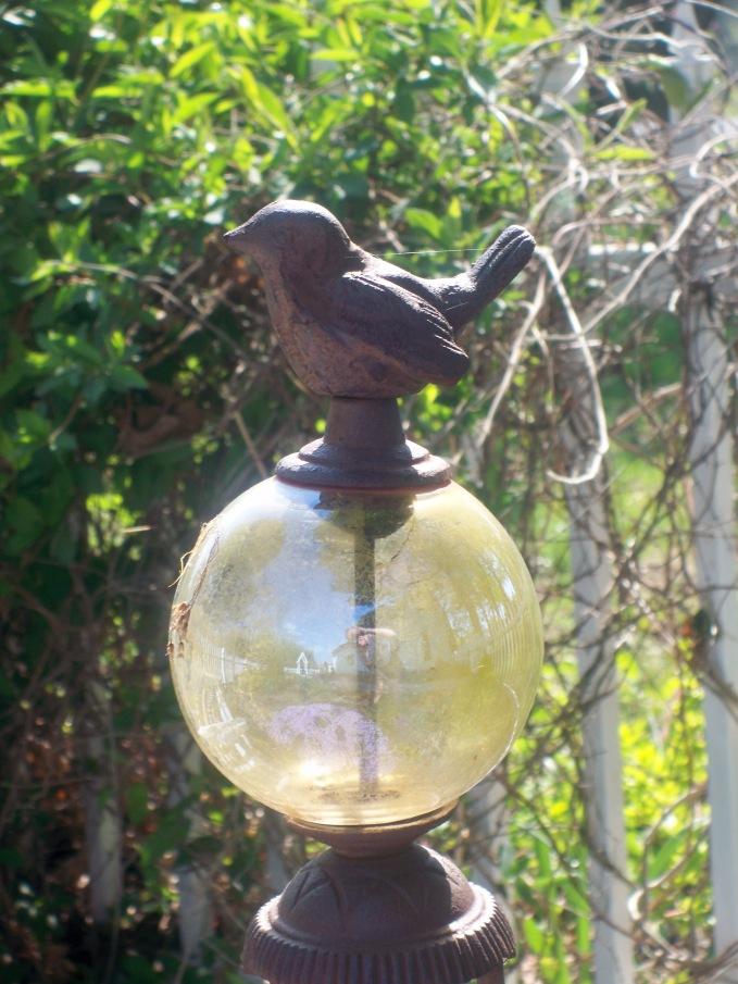 Sparrow perch